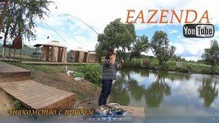 Платный пруд в дурнихе рыбалка без граница