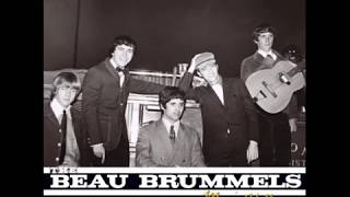 Beau Brummels - People Are Cruel
