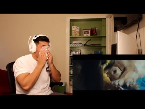Marshmello ft. Bastille - Happier (Official Music Video) - REACTION!! (видео)