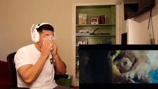 Marshmello Ft. Bastille   Happier   REACTION!!