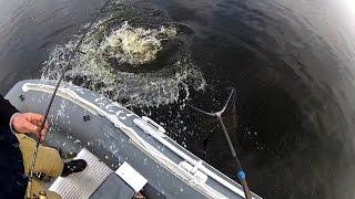 Рыбалка в карелии летом на спиннинг