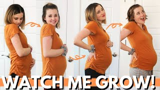 WEEK BY WEEK PREGNANCY PROGRESSION 4 - 20 WEEKS! | 1st Half Of Pregnancy Belly Progression