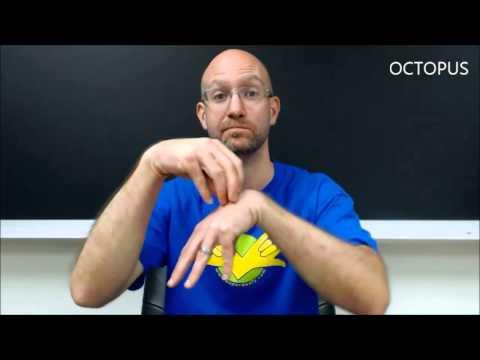 Animals | ASL - American Sign Language