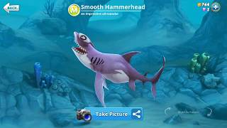 hungry shark world smooth hammerhead (3D Motion)