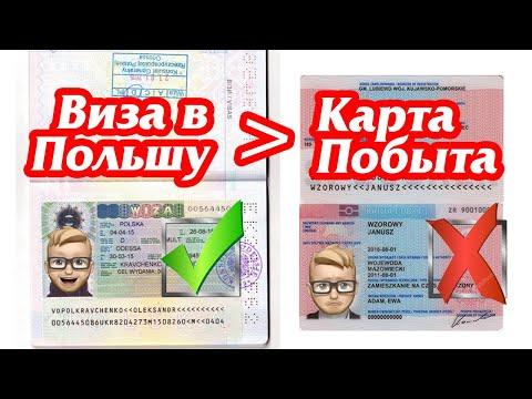 Работать в Польше без перерывов, или сделать визу? Воевода или Карта Побыта?
