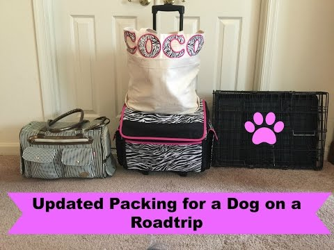 Updated Packing for a Dog on a Road Trip