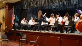 Southwest Florida Sinfonietta