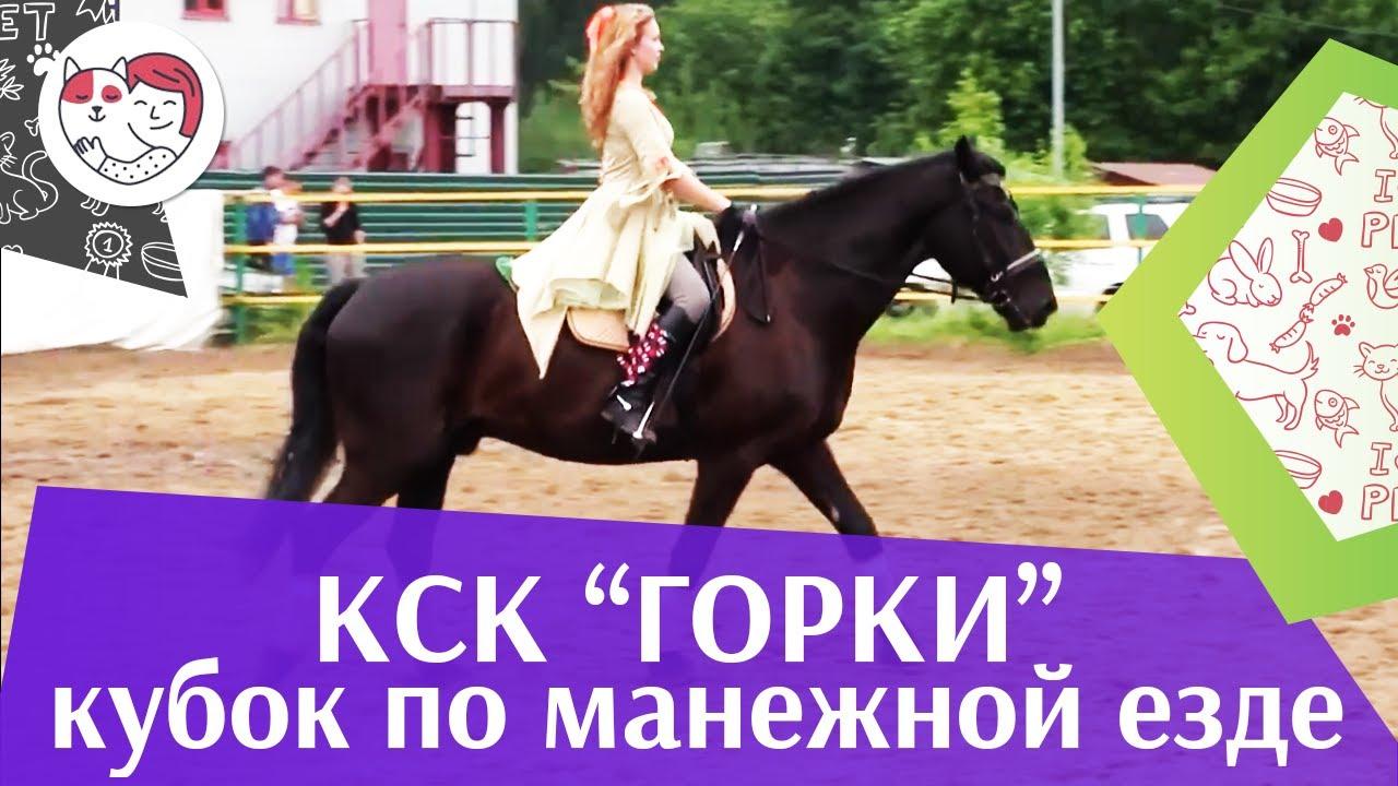 Летний кубок КСК Горки по манежной езде КЮР часть 36 на ilikepet