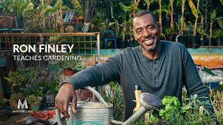Ron Finley Teaches Gardening | Official Trailer | MasterClass