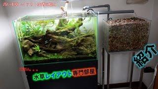 Filtr hydroponiczny po japońsku w akawrium Ada