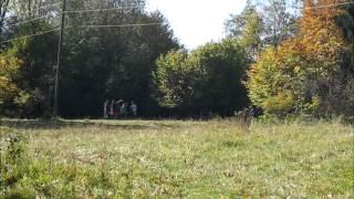 preview picture of video 'Der Discgolf Kurs auf der Eninger Weide'