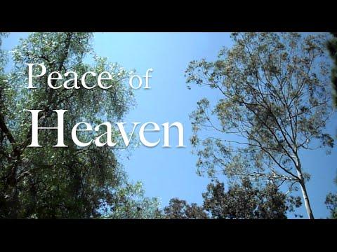 Peace of Heaven ( Live Piano Violin Worship Prayer Prophetic Soaking