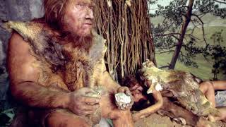 История древнего мира. 3.Неандертальцы