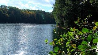 Ловля рыбы на липовском озере