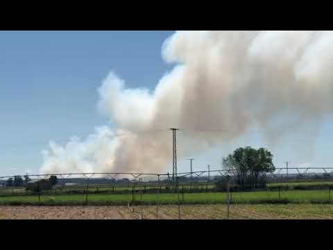 Incendio de polen en Huerta (Salamanca)