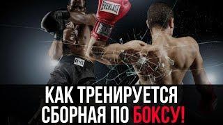 Как тренируются НАСТОЯЩИЕ боксеры?! НЕВЕРОЯТНАЯ тренировка сборной по боксу!