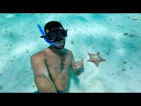 Tour EL CIELO COZUMEL ¿cuanto cuesta? ¿que incluye? desde cancun o playa del carmen@sebitastrip