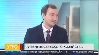 Зам. министра сельского хозяйства Илья Сычев в эфире программы