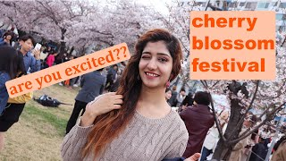 Lets celebrate Cherry Blossoms at Han River | South Korea | Sadia Rind | VLog#70