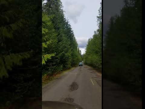 Video Of Gifford Pinchot National Forest, WA