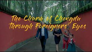 Video : China : ChengDu 成都 stories
