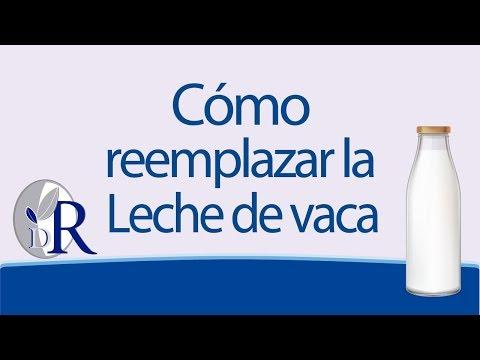 Recomendaciones para reemplazar la leche de vaca | Doctor Rojas