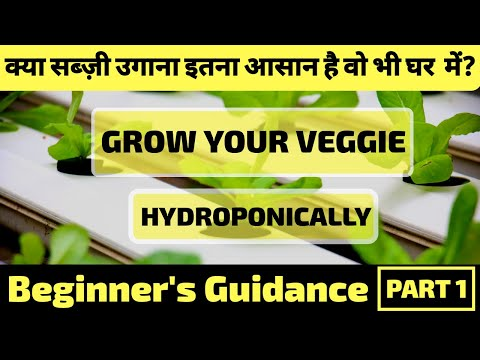 Get free hydroponics training(part 1) Learn basics concepts of ...