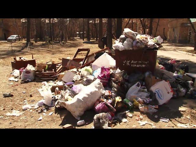 Коммунальщики предлагают мусорить по графику