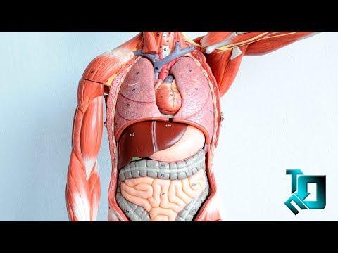 Можно ли заразиться гепатитом с при сдаче крови
