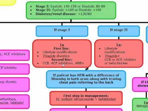 Lhypertension artérielle avant la menstruation