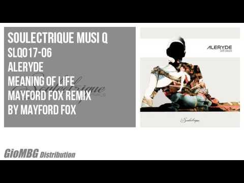 boldog születésnapot remix Aleryde   Meaning Of Life [Mayford Fox Remix] boldog születésnapot remix