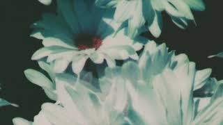 Lana Del Rey - 13 Beaches (Official Instrumental)
