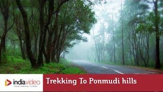 Trekking to Ponmudi Hill Station