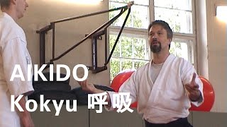 Aikido - Aspects of Inner Training and Kokyu ( 呼吸, Kokyo) - Tellerrand Seminar Berlin Mai 2014