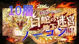 【パズドラ】白蛇の地下迷宮10層
