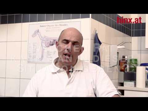 Röntgenstrahlen der Halswirbelsäule Wirbelsäule Khabarovsk