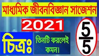 Madhyamik Life Science Suggestion 2021(chitro)/class 10 Jibon Biggan Important Picture (photo) 2021.