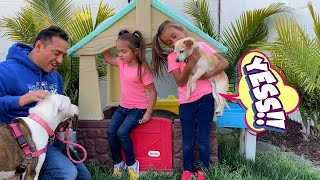 Kids Pretend Play Video for Children   Kids Playing with Toys and Dog