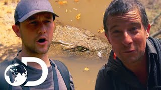 Joseph Gordon-Levitt Unexpectedly Runs Into A Huge Crocodile!  | Running Wild With Bear Grylls