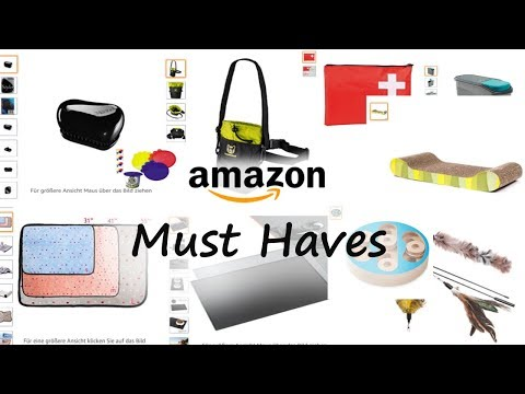 Coole Katzen Must Haves von Amazon