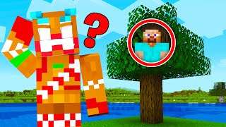I Hosted a $10,000 Minecraft Hide & Seek