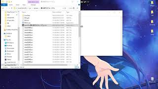 How to use locale emulator on visuals novel