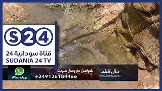 انقطاعات المياه ومشاكل في صلاحيتها بمربع 24 - 25 بالأزهري -  وصل صوتك - حال البلد