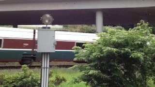 Calico Train