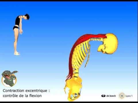 I danni di vita danno in passaggio posteriore