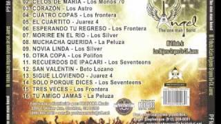 Los Silver-Por Angel the one man band.wmv