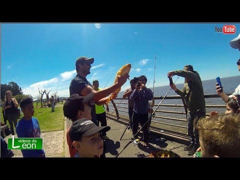La pesca su un chatyrlyka la Crimea