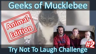 Try Not To Laugh Challenge | #2