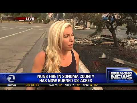 Entire neighborhood burned down in Sonoma County