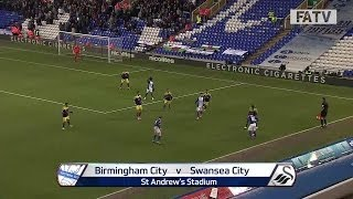 Birmingham City vs Swansea City 1-2, FA Cup Fourth Round 2013-14 highlights
